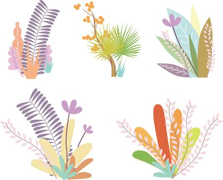 Tropical rainforest foliage flower combination on white background