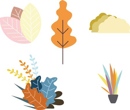 Various combinations of leaves flowers on a white background Illustration