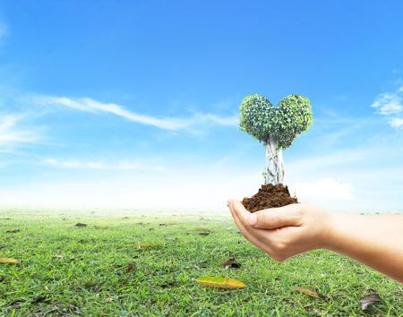 世界环境日的概念