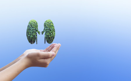 World Kidney Day concept: healthcare symbolic design