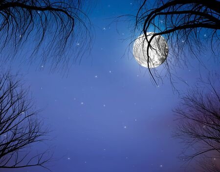 Mid-Autumn Festival concept: Moon and branches in the background of the stars
