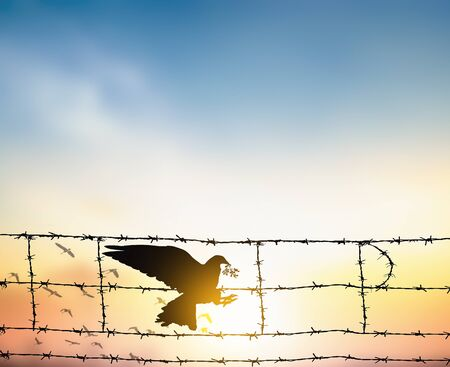 International Day of Non-Violence concept: silhouette of bird carrying leaf branch and barbed wire at sunset background