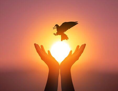 Concept de la Journée mondiale de la santé mentale : Mains de prière silhouette sur fond de ciel coucher de soleil