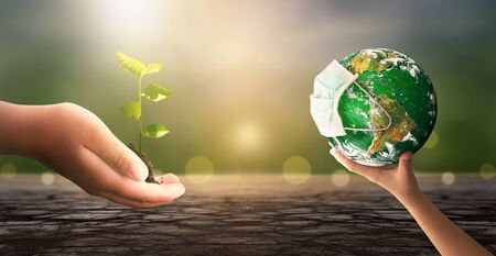 World Environment Day concept: hand holding tree planting and green earth on green nature background.