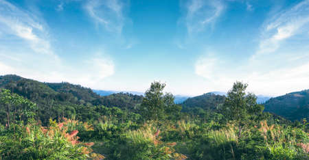 World environment day concept: Green mountains and beautiful blue sky clouds 스톡 콘텐츠