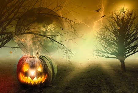 Halloween concept: Spooky pumpkin with moon and dark forest