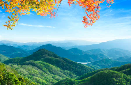 World Environment Day concept: Panoramic view of mountain range covered by forest with blue sky