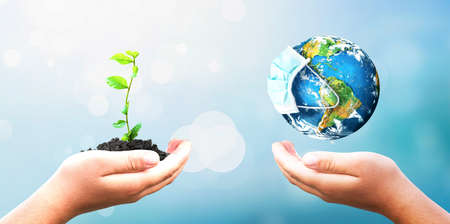 charity concept: hands holding earth globe and tree over blurred nature background.