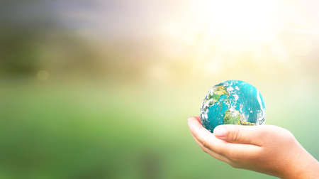 Hands Holding earth global In Lush Green Environment With Sunlight.