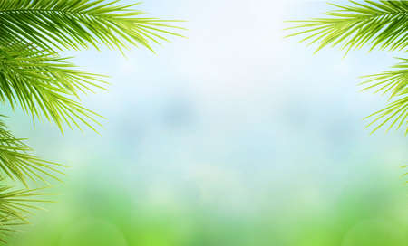World Environment Day concept: Palm Tree Leaves on blue sky background 版權商用圖片
