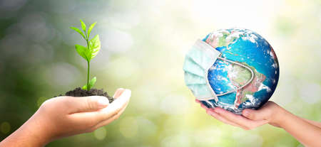 World environment day concept: hands holding earth globe and big tree over blurred nature background.