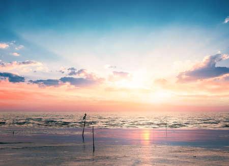 Colorful Polluted beach beach sunrise with deep blue sky and sun rays