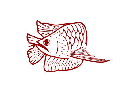 red arowana fish, mono line logo Designs Inspiration Isolated on White Background