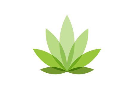 Feuille de cannabis dessins de logos Inspiration isolé sur fond blanc Logo