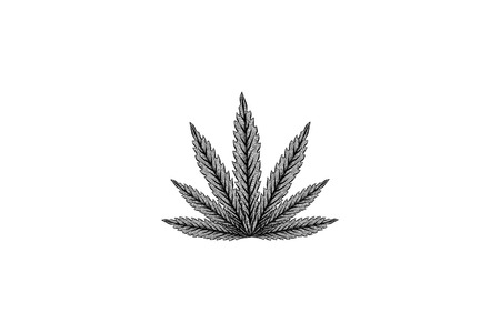 hand drawn cannabis leaf logo Designs Inspiration Isolated on White Background