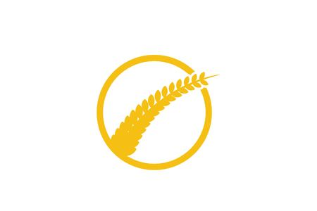 Wheat Grain Agriculture Logo Designs Inspiration Isolated on White Background Ilustracja