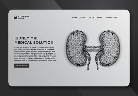 Web page design templates collection of kidney human renal realistic, Abstract Wireframe from dot and lines design. Vector Illustration Illustration