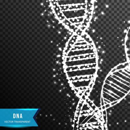 dna helix molecule from connecting dot and line. light effect. vector illustration, isolated on transparent background