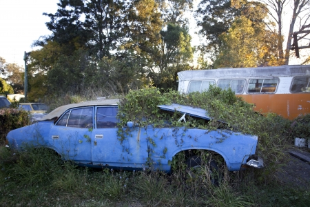 Abandoned cars photo