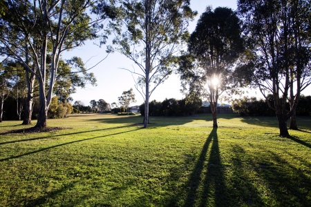 Queensland, Brisbane Park Stock Photo - 17015722