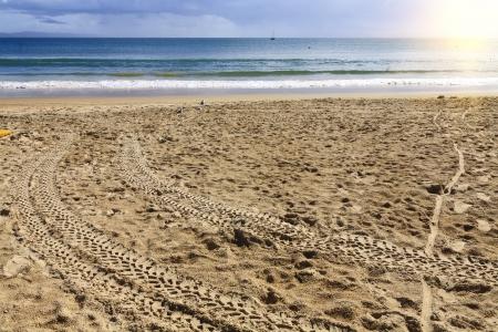Australia Noosa coastline photo
