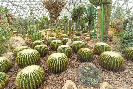 concourse: Botanical garden