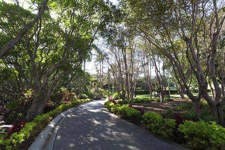 queensland: Queensland Brisbane City Park