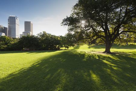 Soleggiato paesaggio urbano nel centro di Sydney, Australia. Archivio Fotografico - 104495631