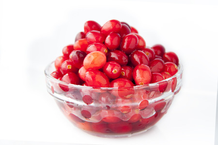 Mainly growing northern hemisphere fruit, red berry cranberry Banco de Imagens - 111683301
