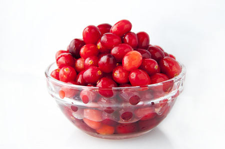 Mainly growing northern hemisphere fruit, red berry cranberry Banco de Imagens - 111683302
