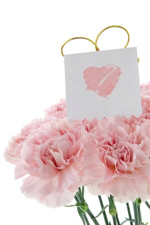 Happy Mother's Day, pink carnations in full bloom with card.