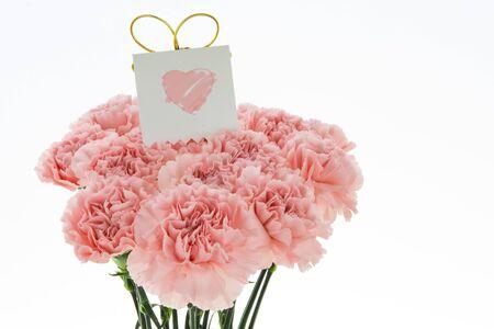 Feliz día de la madre, claveles rosados en flor con tarjeta.