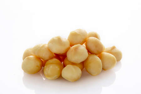 Nutrient-rich nuts, macadamia, also known as macadamia beans,