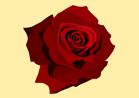 Red rose in yellow background.