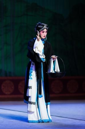 Opera di Pechino Archivio Fotografico - 17776825