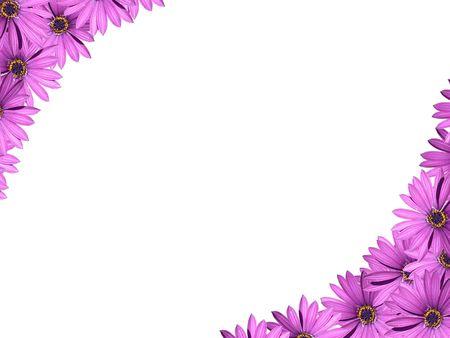 esquineros de flores: marco floral