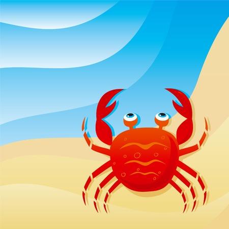 cute little crab