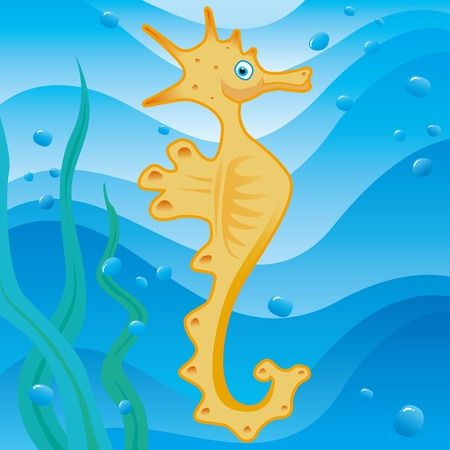 cute little seahorse Stock Vector - 4597397
