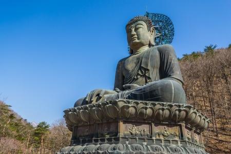 subduing: Giant bronze buddha image