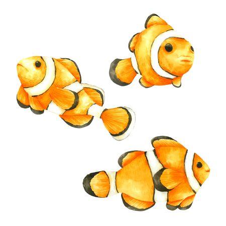 Nemo Fish watercolour set isolated on white background
