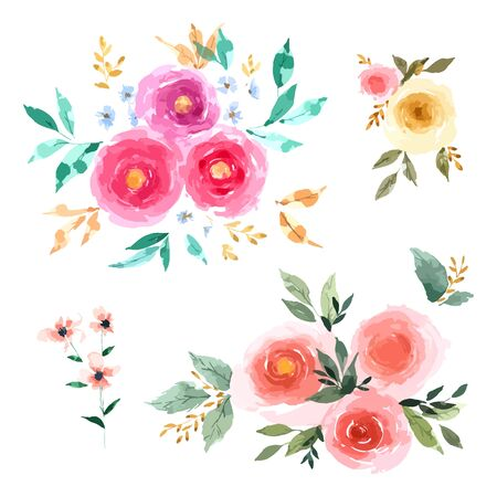 Rose Flower set with hand drawn watercolour for design isolated on white background