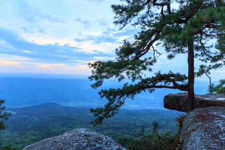 kradueng: Sunset at Pha Lom Sak Cliff Phukradueng Nationalpark