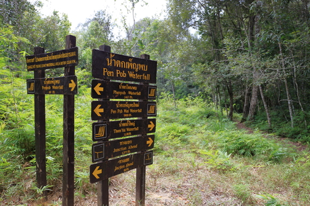 turism: Sign in the Forest