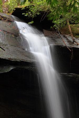 phukradueng: Thamyai Waterfall in phukradueng national park thailand
