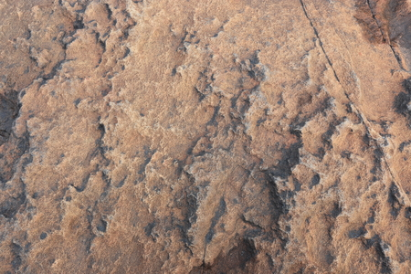 sandstone: Sandstone surface