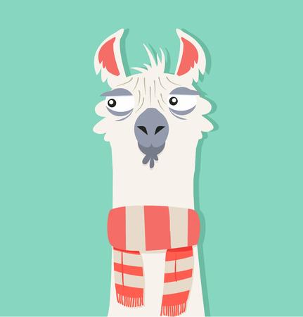 Alpaca with scarf Illustration