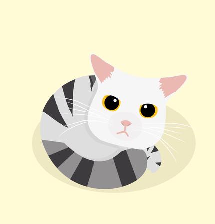 naive: cute cat sleep