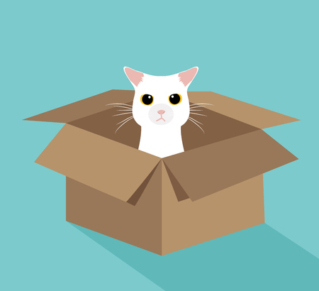 Cute white cat in the box Vectores