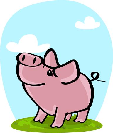 Lindo cerdo en la hierba
