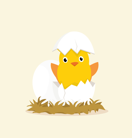 eieren kuikens Stock Illustratie